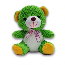 Green Teddy Bear Soft Toy