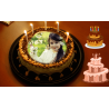 Picture Cake 2 KG
